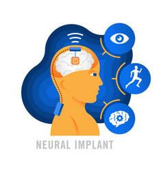 brain implants neural implants flat vector image