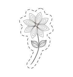 chrysantemum flower decoration cut line vector image