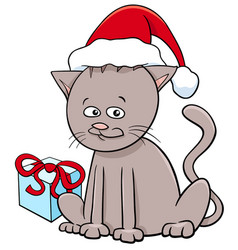 Kitten with present on christmas vector