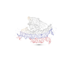 russia map with bear from lines triangles vector image