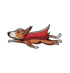 superhero dog flying vector image