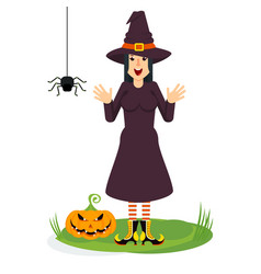 witch and spider vector image