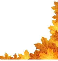 Autumn leaves background with space for text vector image
