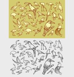 Bird sketch 2 vector image