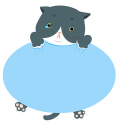 pity blue cat hold empty board vector image vector image