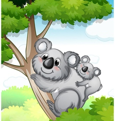 Bears in nature vector