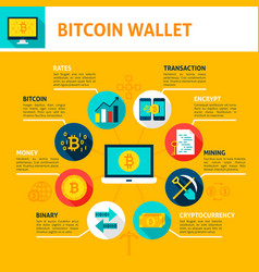 bitcoin wallet infographics vector image