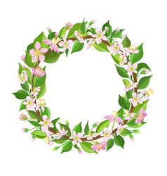 cherry flowers and leaves wreath beautiful vector image