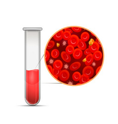 glossy medical test-tube with red blood vector image