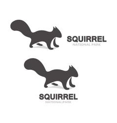 gray squirrel logo or icon vector image