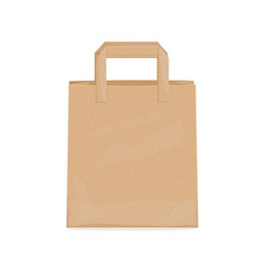 kraft paper bag for groceries vector image