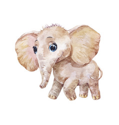 Little cute elephant watercolor vector