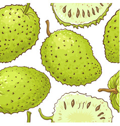 soursop fruits pattern on white background vector image