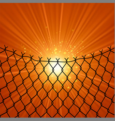 sun and wire barb freedom concept peace day vector image