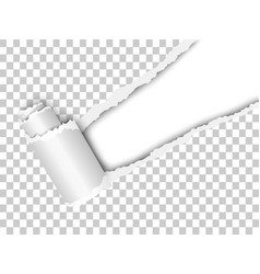 torn snatched window placed diagonally vector image