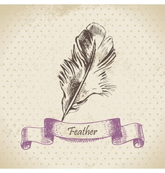 Vintage background with feather vector image