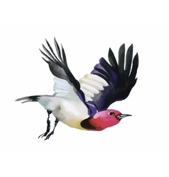 Watercolor colorful flying Bird on white vector
