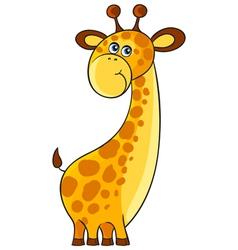 Giraffe Cartoon african wild animal character vector image