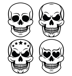 Halloween human skull design Day of the Dead vector image