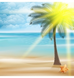 Untouched tropical beach vector image
