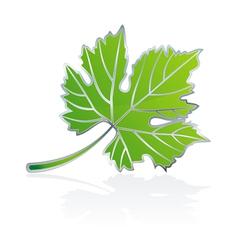 icon vine leave vector image