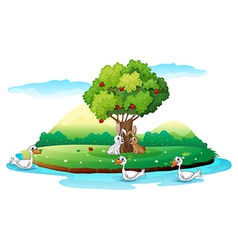 An island with animals vector image