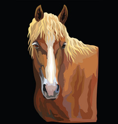 Colorful horse portrait-4 vector