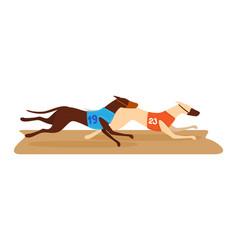 Competition dog running contest fleeing hound vector