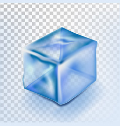 ice cube isolated transpatrent fresh piece vector image