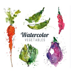 Set of watercolor vegetables vector image