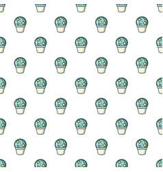 Astrophytum cactus pattern seamless vector