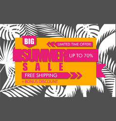 Summer sale banner with white tropical exotic palm vector