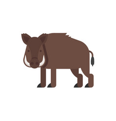 flat style of boar vector image