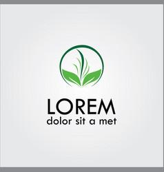 grass logo vector image