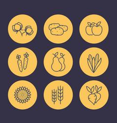 harvest line icons set organic farm food vector image vector image