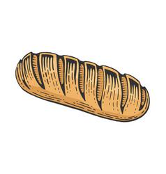 Bread loaf color sketch engraving vector