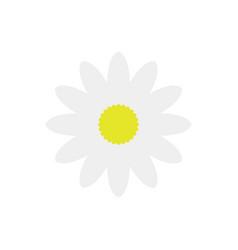 daisy flower icon vector image