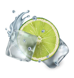 half a lime with ice cubes and water splash vector image