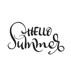 hello summer text isolated on white background vector image vector image
