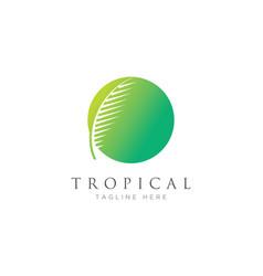 palm leaf logo design template vector image