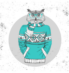 retro hipster bird owl dressed in pullover vector image