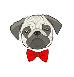 sad dog face isolated on white background vector image