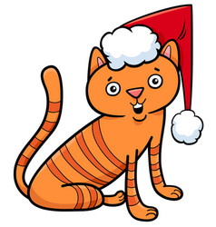 cat or kitten on christmas cartoon vector image