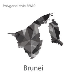 isolated icon brunei map polygonal geometric vector image