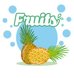 Pineapples fresh and delicious fruit vector