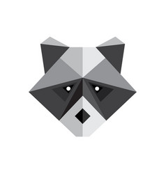 polygon raccoon icon vector image