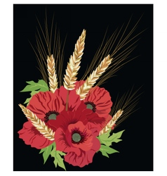 Poppy flowers and ear of wheat vector