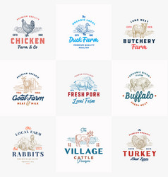 premium cattle and poultry farm retro badges vector image