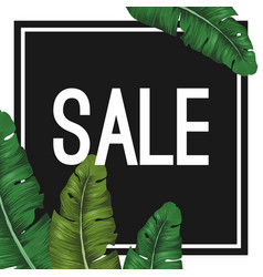 sale tropical summer poster with jungle leaves in vector image