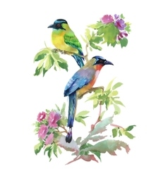 Watercolor colorful Birds with leaves and flowers vector